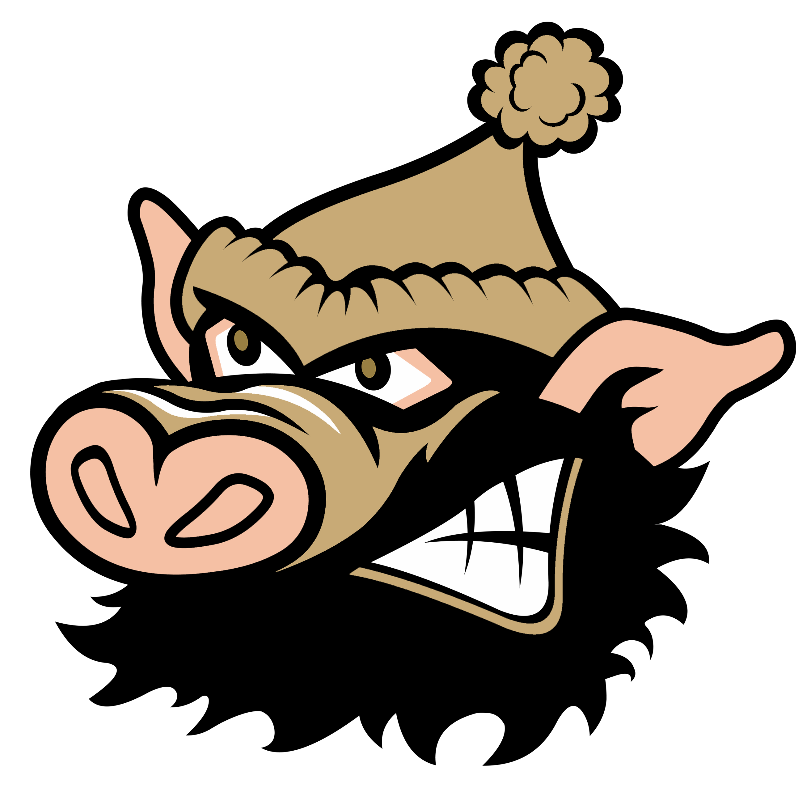Official Site of The Tupper Lake Riverpigs